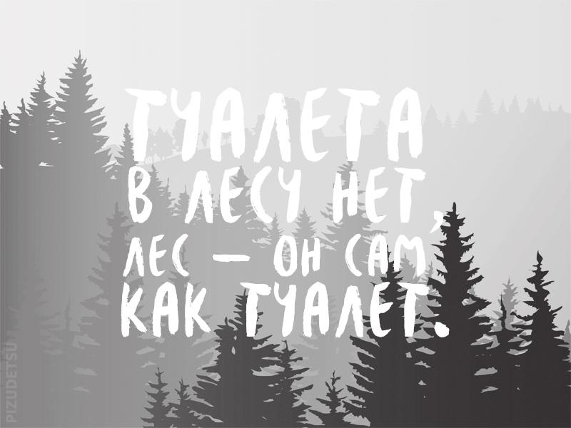 Про лес